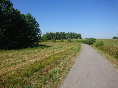 Zdjęcie poglądowe trasy Biegu Kosiarza